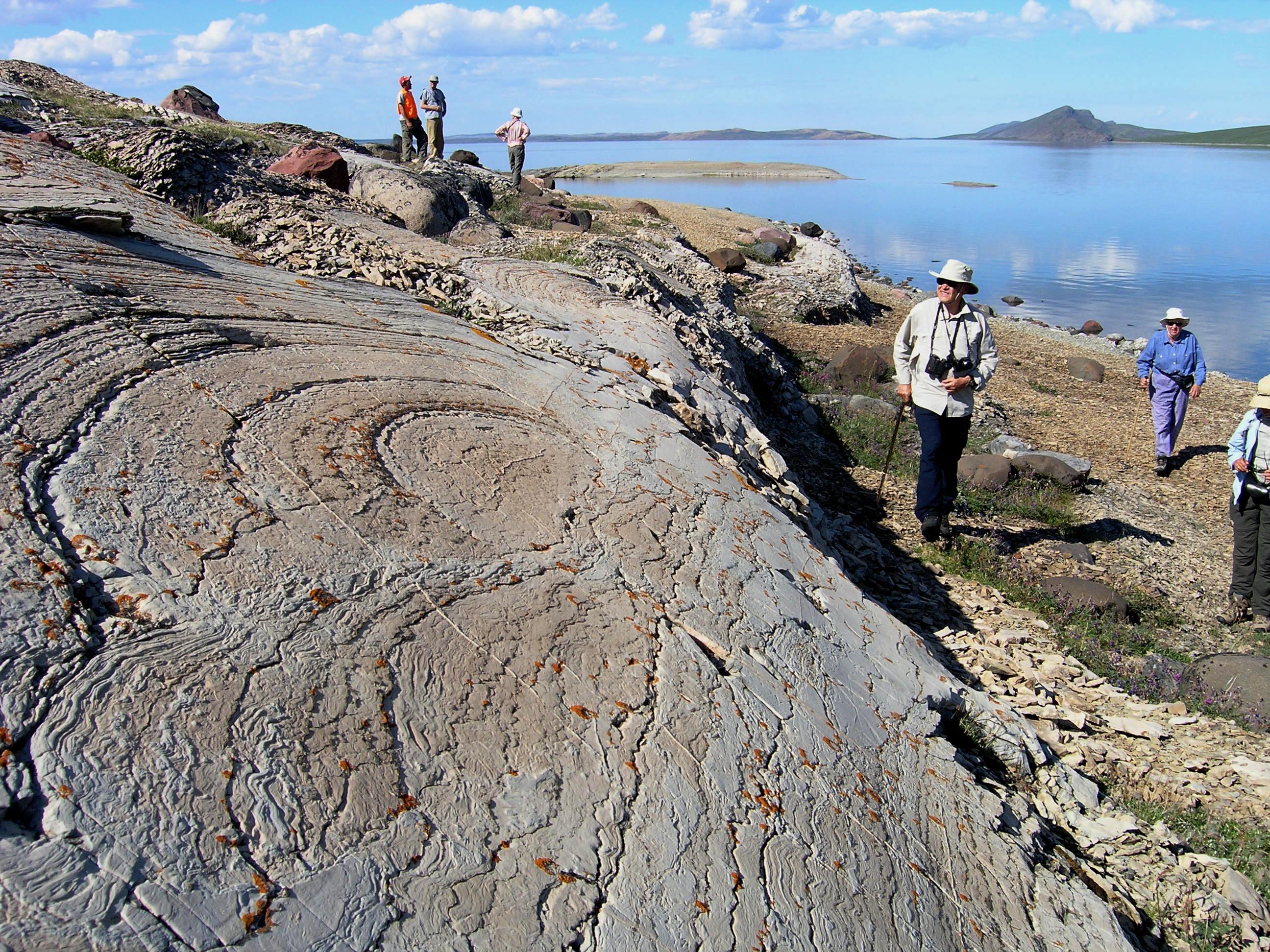 Stromatolite, Seal Cache Island